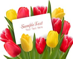 Beautiful tulips flowers background by vectorbackgrounds