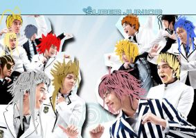 Suju Org XIII 2 by sefie-ireth