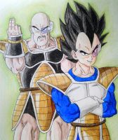 Vegeta and Nappa by RanCh000