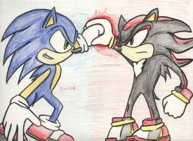 Sonic and Shadow by Lukia148