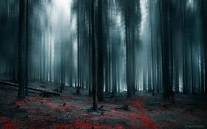 The path of The Forgotten by borda