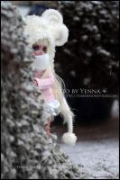 Sheepish by yenna-photo