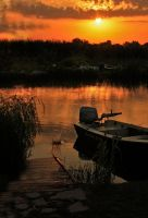 Sunrise in Danube Delta by eucoto