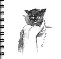 mandatory daily cat sketch 1471 by nosoart