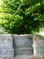 Stone Bench + Tree Background by Enchantedgal-Stock