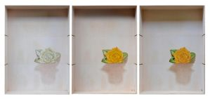 Yellow Rose 4 process by deRaat