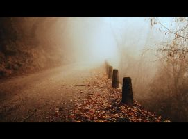 The Ancient Path by Defectiveunit