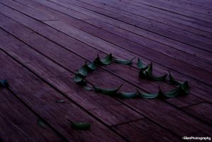 Leaves Heart (a) by EliasPh