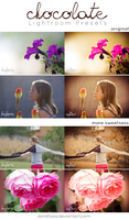 LR Preset Pack: Chocolate by DorottyaS