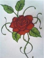 rose tattoo - design by Rachel-Cranmer