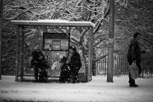 Bus Shelter in the Snow by Nocturnatum
