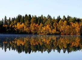 .September. by forrest-walker