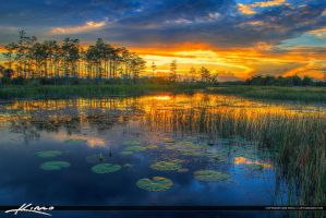 Florida-Wetlands-Sunset-River-of-Grass by CaptainKimo
