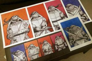 Turtles Art Giveaway by TheRigger