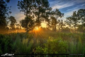 HDR-Photography-Foggy-Morning-Sunrise by CaptainKimo