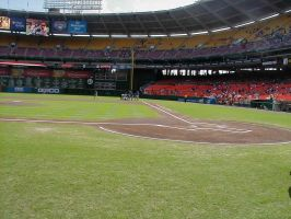 Home Plate by bella611