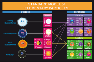 Standard Model of Physics by PhysicsAndMore