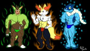 Pokemon: XY Starters 2nd Evolutions by CaseyLJones