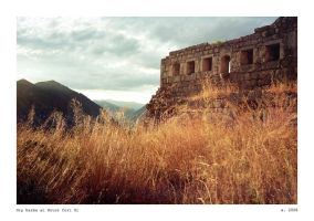 Dry herbs at Kotor fort 01 by ESDY