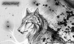 Star Wolf by Decadia