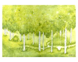Birch Forest by windinmysails