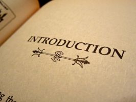 1. Introduction by Chaos-Sister