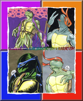 Four Types of thee Sexy Turtle by alaer
