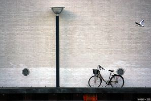 Bikes speak in Copenhagen 8 by FabioBusi