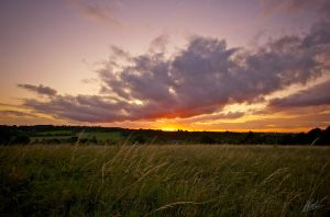 Farthing Downs Sunset 4 by andy1349