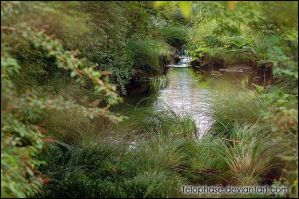 Okunoin Cemetery Stream by telophase