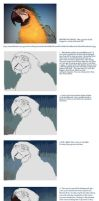 Art Academy: Macaw Tutorial by napalmnacey