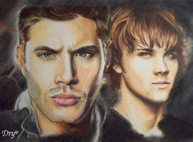 Winchester brothers by Dry89