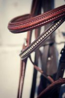 bridle. by equinelovex