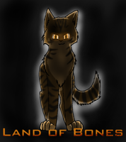 Land of Bones Cover by Selena112