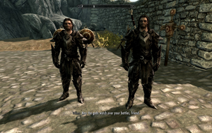 Farkas 'n Vilkas in Ebony Armour by Mediziner