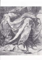 Drapes Study by BaronDobbs