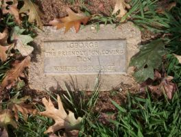 George's Resting Place by Pooleside