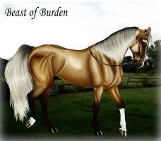 MD Beast of Burden MAYBE by codfishing