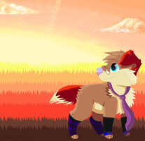 .:CO:. PapiaFluff by SpunkyRacoon