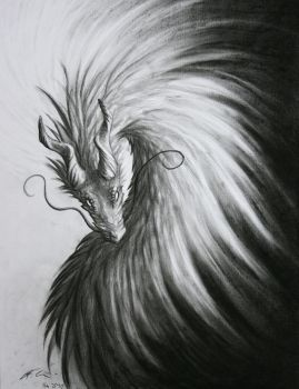 charcoal dragon by dashase
