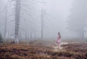lost in the mist by baravavrova