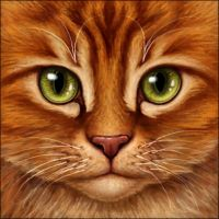 Firestar by Wynnyelle