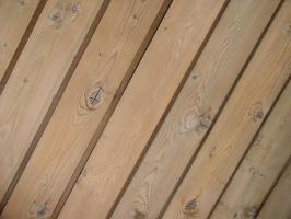 Texture - Wood 11 by SanStock