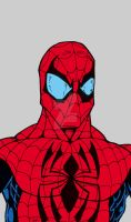 Spiderman Bust with flat colors June 2012 by StraitArrowGraphix