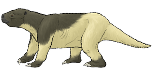 Pseudoprepotherium confusum by WSnyder