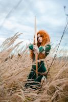 Brave: 'Let the lucky arrow find it's own target' by BakaMarionette