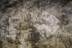Almost Natural Texture -Unrest by Cat-in-the-Stock