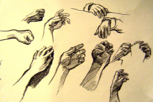 Study of Hands by Widelia