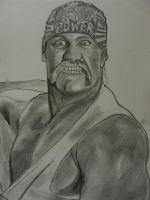 WWE Hulk Hogan 1 by VinceArt