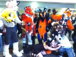Ohayocon 2012: FURRIES by BigAl2k6